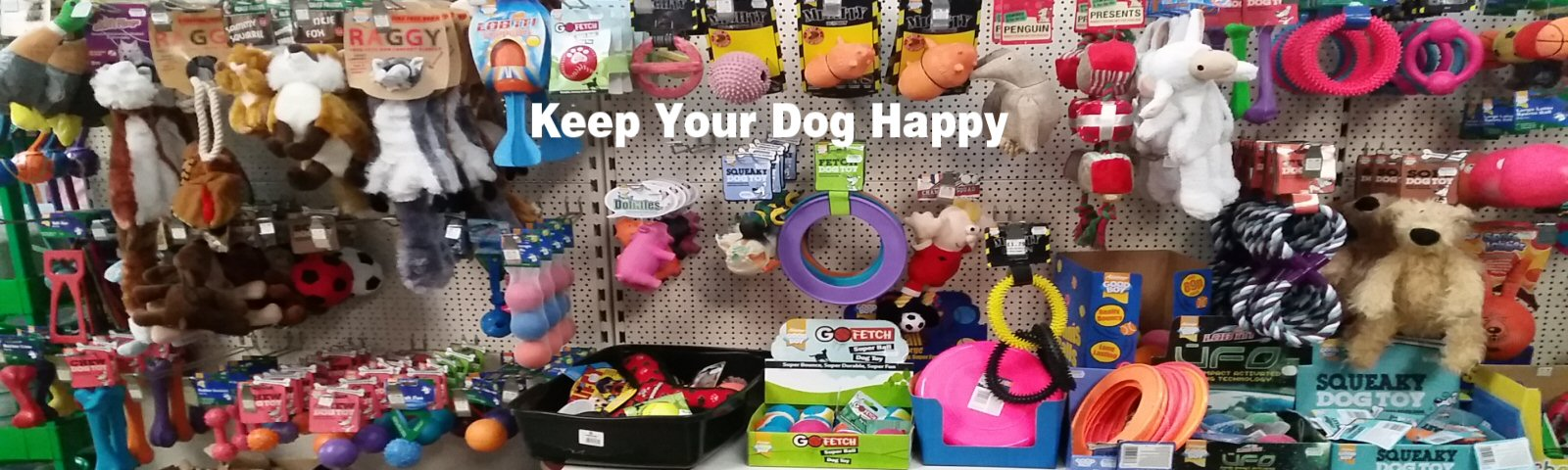 Great Selection of Toys & Treats